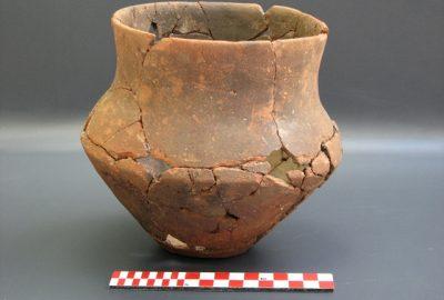 54 (Vaso 2)